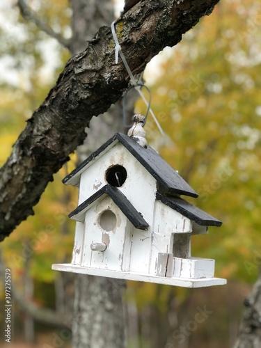 Canvas Print white bird house hanging on tree