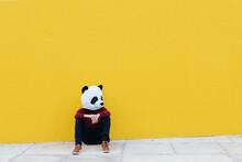 Man Wearing Panda Mask While Sitting Against Yellow Wall