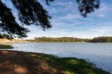 View Of The Lake Under The Shade Of Tall Pine Trees, On A Sunny Day But With Some Clouds. Balneario Ipora, Taquarembo, Uruguay
