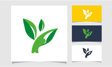 Yoga Logo Design Image Download, Logo Images, Stock Photos & Vectors