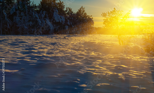Fototapety, obrazy: winter snowbound forest glade at the sunset