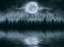 Foggy Dark Forest. Night View, Fog, Smog. Wild Forest Nature, Forest Landscape, Moonlight Reflection In Water, Forest Landscape. Abstract Fantasy Forest With A River.