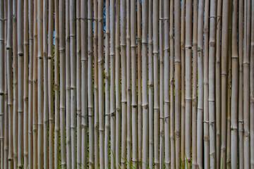 Bamboo Wood Wall