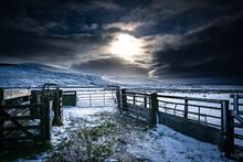 Farm Gates In The Snow