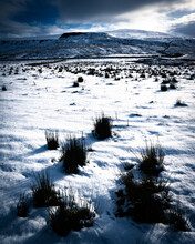 Snowy Field In The Yorkshire Dales