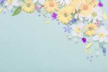 Beautiful Flowers  On Blue Paper Background