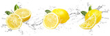 Fresh Lemons with water splash on isolated white background