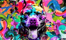 Dog With Splashes Art Design