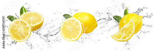 Fototapeta Fresh Lemons with water splash on isolated white background obraz