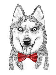 Panel Szklany Pies husky dog head hand drawn illustration. watercolor doggy in bow-tie