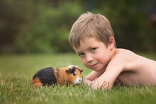 Child With A Guinea Pig On Green Grass