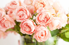 Bouquet Of Peony Pink Roses Of Juliet. Coral Flowers, Floral Background.