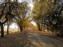 Multi Use Trail In Sacramento During Fall