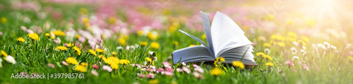 Open book in the grass on the field on sunny day - fototapety na wymiar