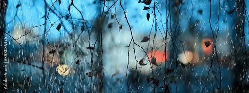 Fotografia abstract rain background park gloomy drops, seasonal concept sad
