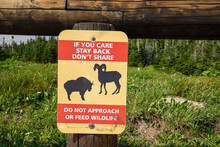 Sign Reminding Tourists And Hikers To Stay Back And Not Approach Wildlife In Glacier National Park