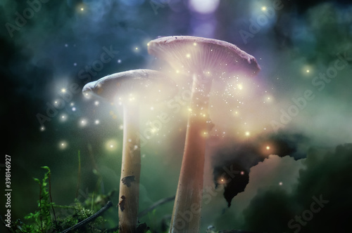 Fototapeta Fantasy world. Mushrooms with magic lights in enchanted forest obraz