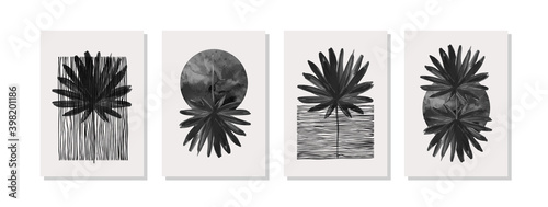 Fotografia Abstract geometric, natural shapes poster set in mid century style