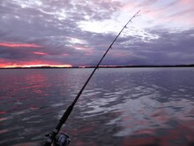 Sea Fishing At Sunset. Two Fishing Rods Stand Obliquely On A Pebble Beach. The Clouds In The Blue Sky Are Tinted Pink, Orange, Lilac. Sunny Path On The Water.