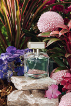 Bottle Of Perfume Surrounded By Fresh Flower