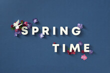 Spring Time Text Sign On Classic Blue Background.