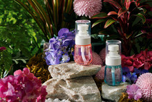 Essential Oil Bottles With Flowers And Green Freshness. Herbal Beauty Treatment.
