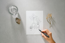 Artist Hands With Graphite Pencil Drawing Still Life Picture On Paper At Studio
