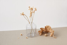 Crumpled Paper And Glass With Dry Plant.