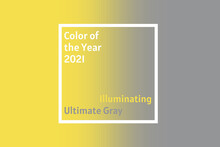 Demonstrating Trendy Colors 2021 - Gray And Yellow. Frames With Text And Color Samples.