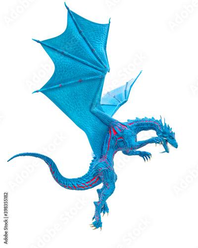 Billede på lærred master dragon is looking down on white background
