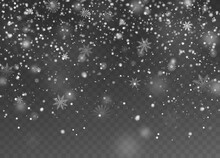 Falling Snow. Christmas Fall Shining Little Snow, Magic White Snowfall Snowflakes Texture, Snowstorm Winter Holiday Vector Background