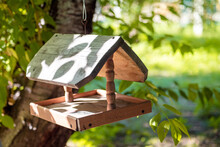 Beautiful Homemade Wooden Bird And Squirrel Feeder Hanging On A Tree On A Sunny Summer Day