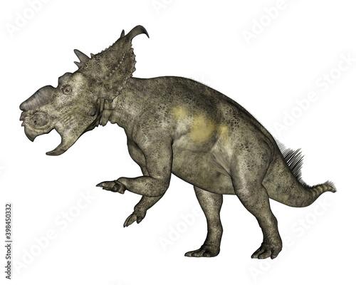 Foto Pachyrhinosaurus dinosaur roaring isolated in white background - 3D render