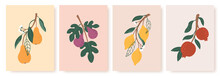 Abstract Fruit Poster. Modern Prints With Summer Fruits, Leaves And Flowers. Lemon, Pear And Fig Branches In Minimalist Art Style Vector Set