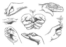 Hands With Plant Sprout. Farmer Hand Holding Soil And Planting Seeds. Save Nature, Grow New Trees. Agriculture And Ecology Sketch Vector Set