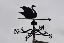 Black Swan Weather Vane In Silhouette