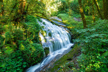Lan Sa Ded Waterfall At Kew Mae Pan Nature Trail In Doi Inthanon, Chiang Mai, Thailand