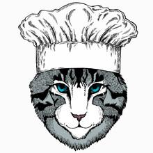 Cat Head. Chef Cook Hat. Restaurant Logo. Vector Animal Portrait. Face Of Kitten.