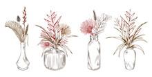 Exotic Tropical Flowers In Vases.