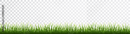 Fototapeta Green grass border set on transparent background. Vector Illustration obraz