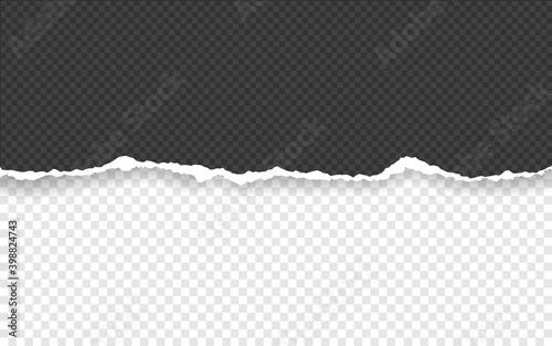 Fototapeta Horizontal torn paper edge. Ripped squared horizontal paper strips. Vector illustration obraz