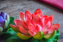 Picture Of Artificial Pink Color Lotus Flower. Use For Home Decoration.