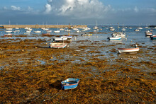 Marina At Low Tide With A Lot Of Wrack In Penmarch, A Commune In The Finistère Department Of Brittany In North-western France