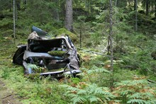 An Old, Broken Car Is Abandoned In The Forest. It Rusty, Broken And Growing Moss.