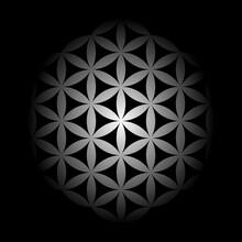 Black White Flower Of Life Mandala Pattern.