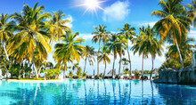 Beautiful Lush Tropical Palm Trees Against Blue Sky With White Clouds Are Reflected In Turquoise Water On Sunny Day. Colorful Image For Summer Vacation.