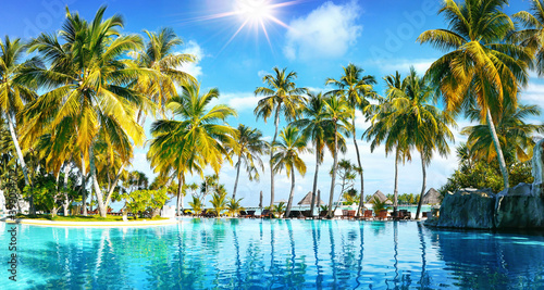 Obraz Beautiful lush tropical palm trees against blue sky with white clouds are reflected in turquoise water on sunny day. Colorful image for summer vacation. - fototapety do salonu