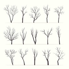 Trees With Bare Branches Silhouette Set. Mysterious Black Growths Twisting Stems Of Plants With Various Tracery Forms Of Shape Winter With No Forest Leaves Dry Plucked Shoots. Abstract Vector.