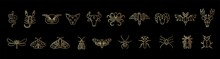 Outline Golden Icon Set Of Mystic Animals And Insects. Butterfly, Moth, Dragonfly, Spider, Beetle, Scorpion, Snake, Owl, Deer, Cat, Bull, Aries, Raven, Octopus, Bat
