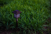 Little Lights In The Garden